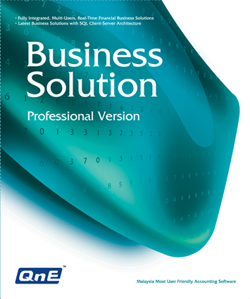 QnE Business Solutions - Professional Version
